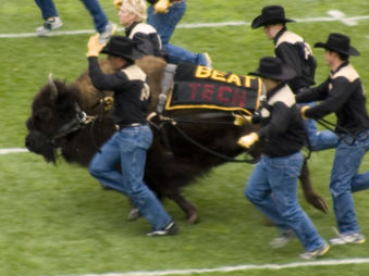 university of colorado buffaloes football sports schedule