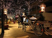 denver carriage ride